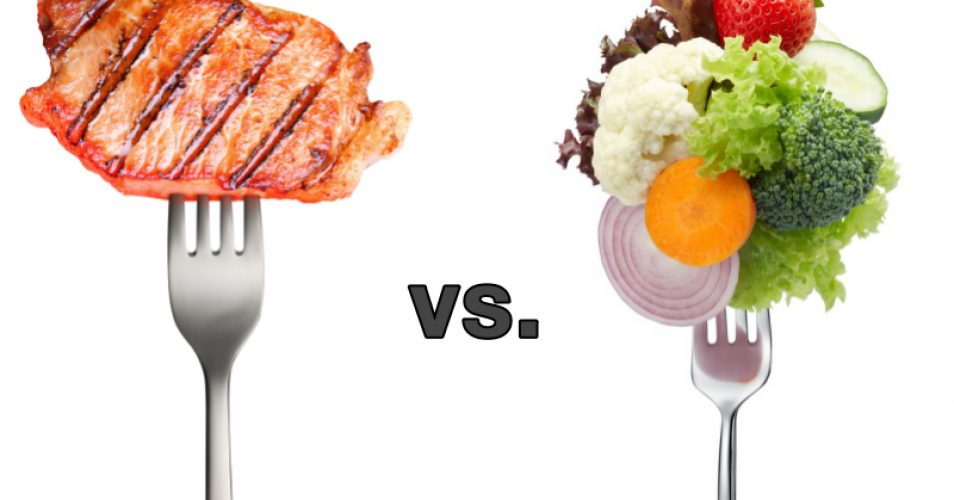 Animal vs. Vegetable:  Does Protein Choice Matter?